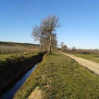 Montoliu de Lleida_Canal d'Urgell 2_1920px