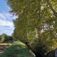 Montoliu de Lleida_Canal d'Urgell_1920px
