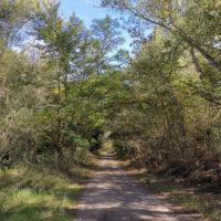 Montoliu de Lleida_Patamolls2_1920px