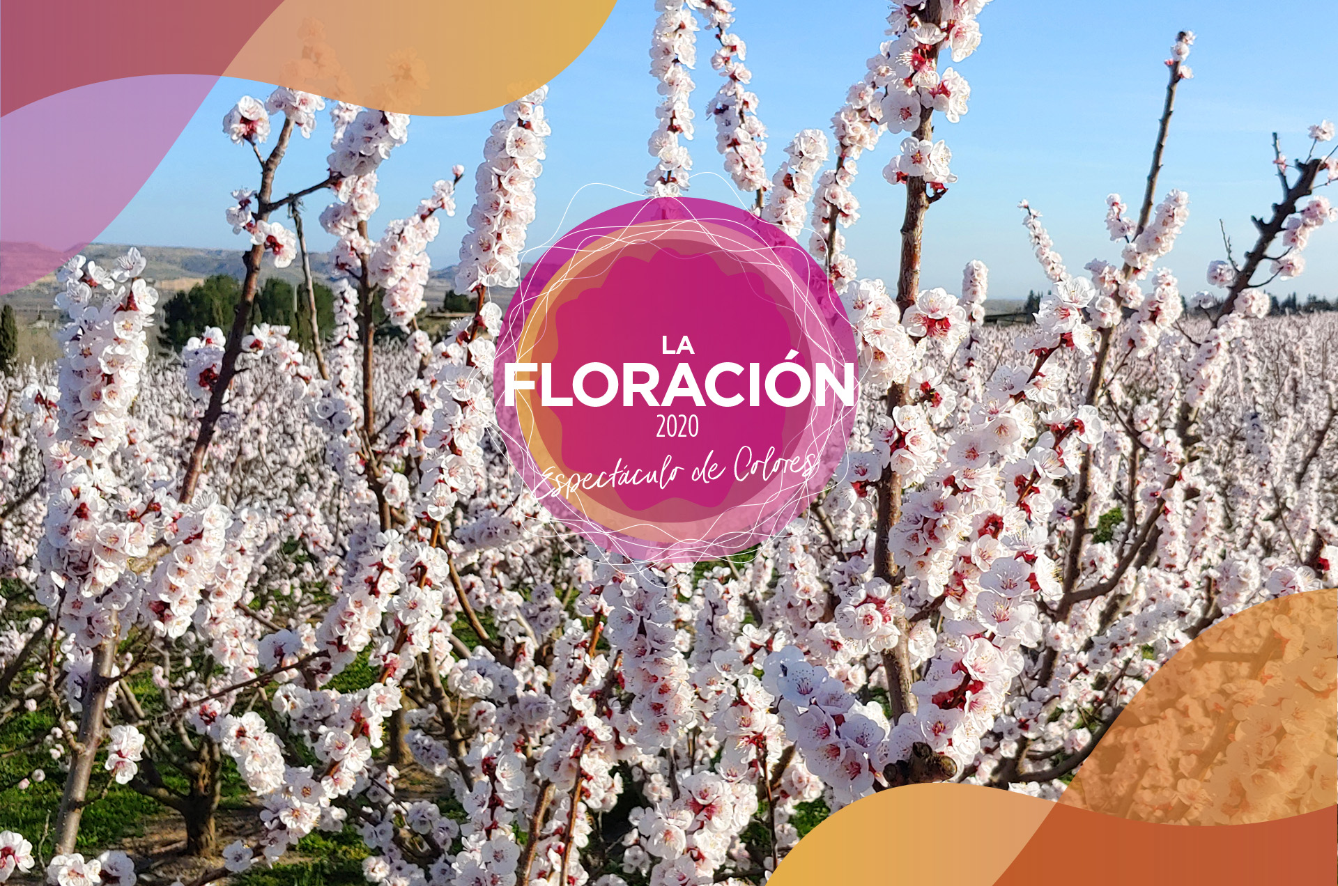 La floració 2020 ESP